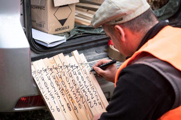 Beschriftete Holzpflöcke dienen zur Markierung von Schusspunkten und Geofonpunkten.